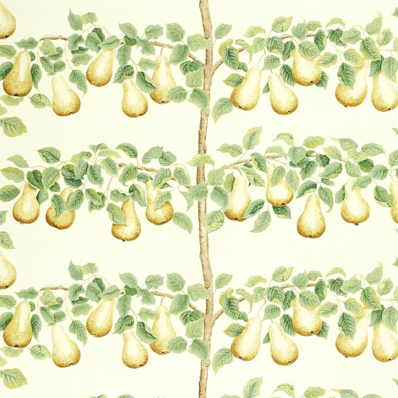 DNTF226735 Collection - National Trust Fabric