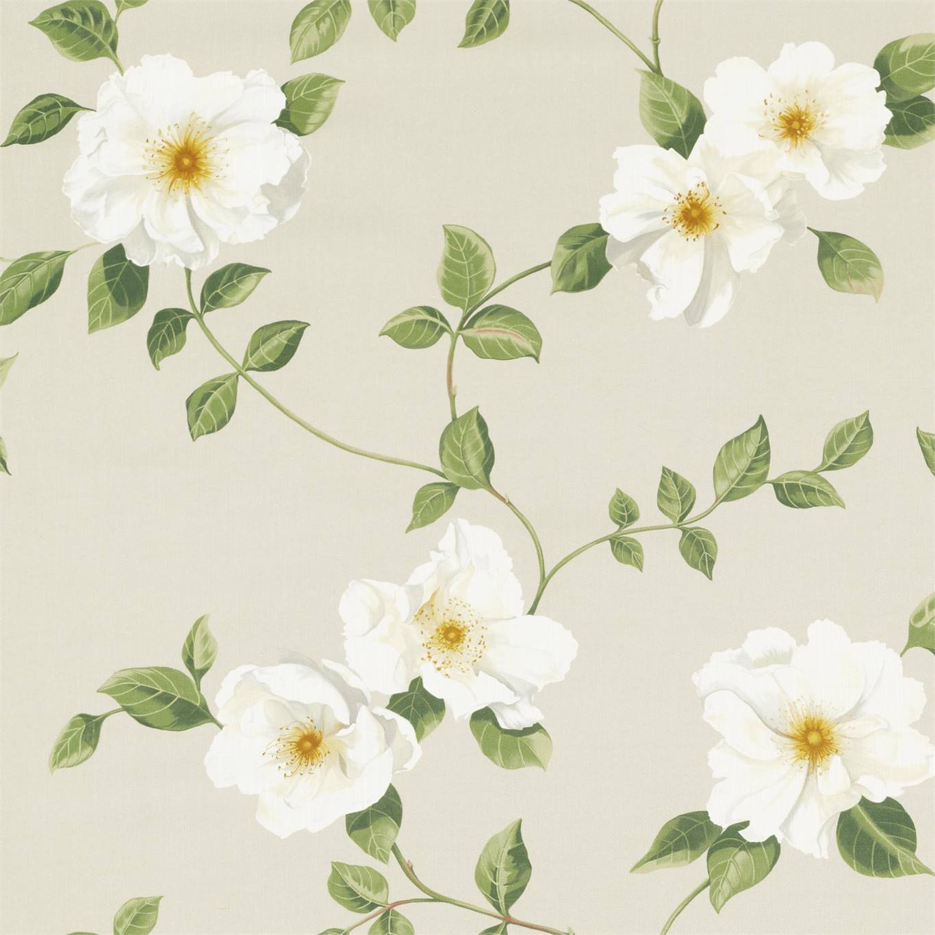 DNTF226738 Collection - National Trust Fabric