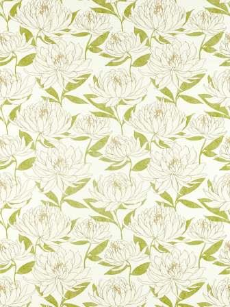 HSAF120818 Collection - Salinas Prints And Weaves Fabric