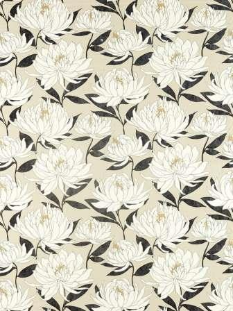 HSAF120819 Collection - Salinas Prints And Weaves Fabric