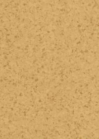 images_flooring_Starlux_K825A-317 Collection - Armstrong Starlux