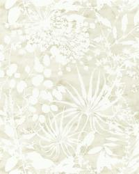images_wallcovering_Anthozoa_HANZ111638 Collection - Anthozoa Wallpapers