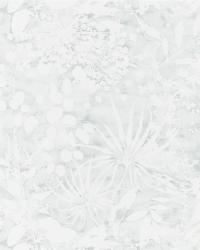 images_wallcovering_Anthozoa_HANZ111639 Collection - Anthozoa Wallpapers