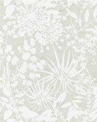 images_wallcovering_Anthozoa_HANZ111640 Collection - Anthozoa Wallpapers