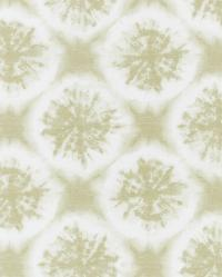 images_wallcovering_Anthozoa_HANZ111641 Collection - Anthozoa Wallpapers
