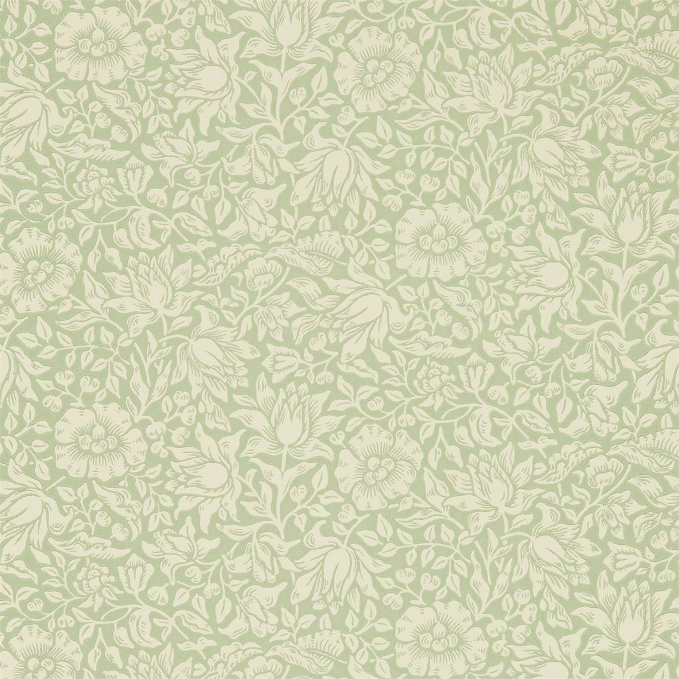 DMSW216678 Collection - Melsetter Wallpapers