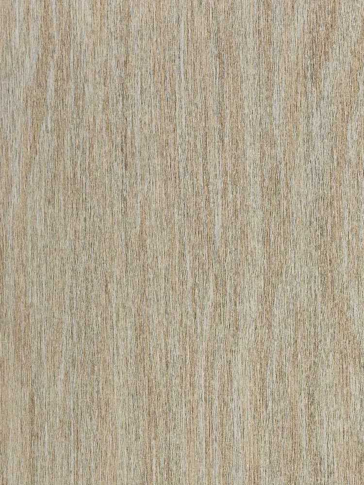 P3T-60157 Collection - P3TEC-In-Grained