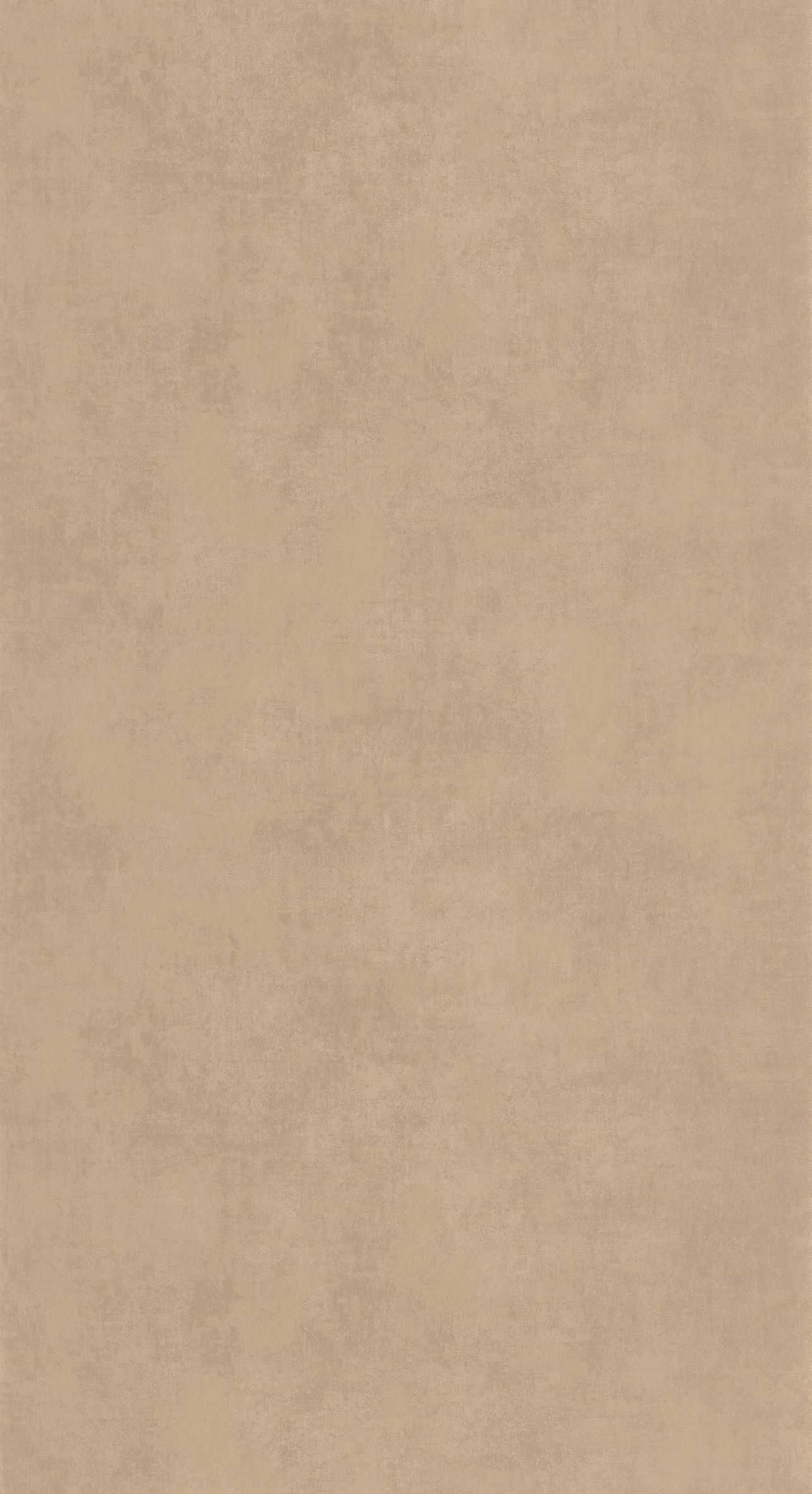 80831265 Collection - Stone