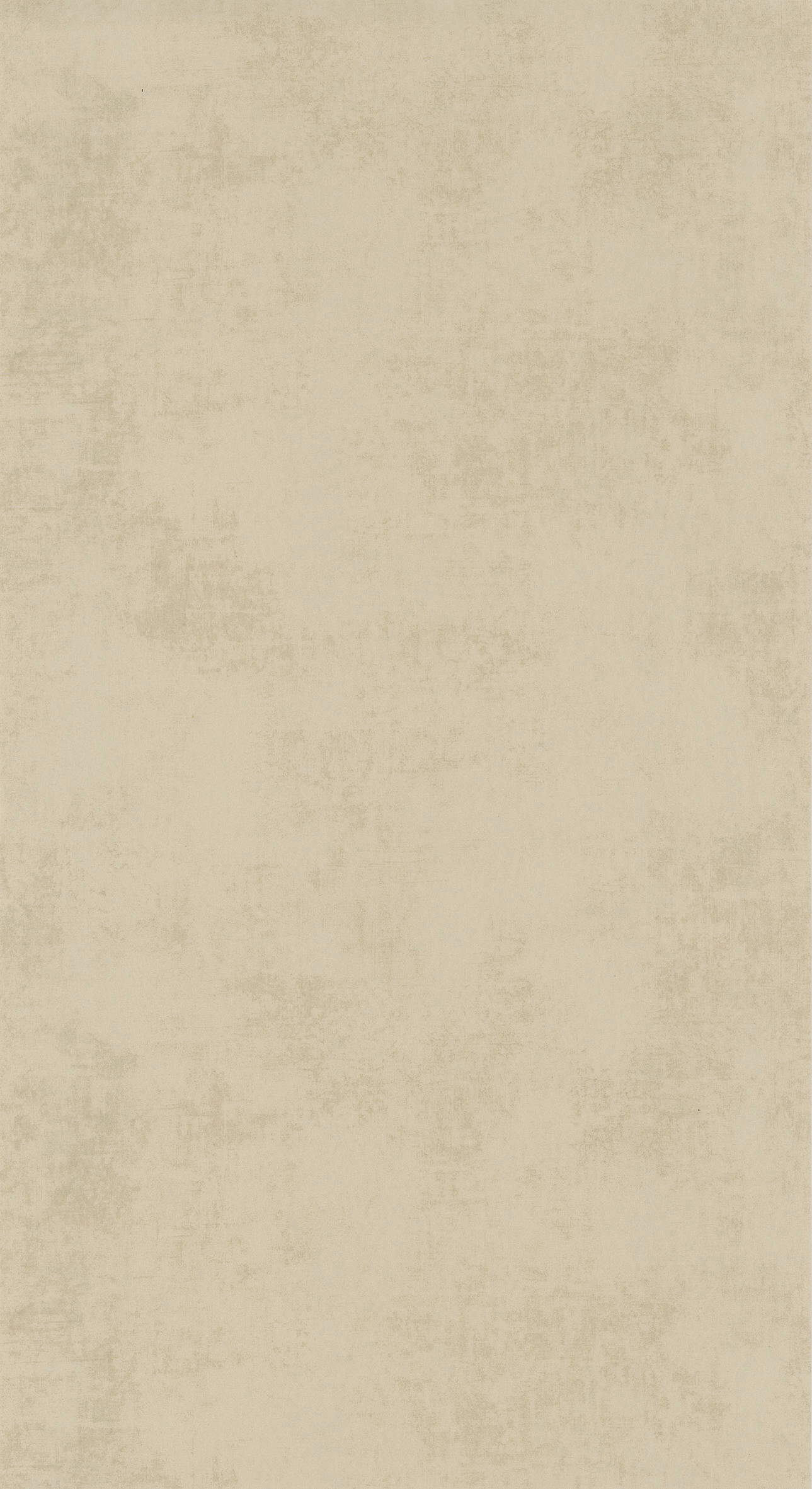 80831313 Collection - Stone