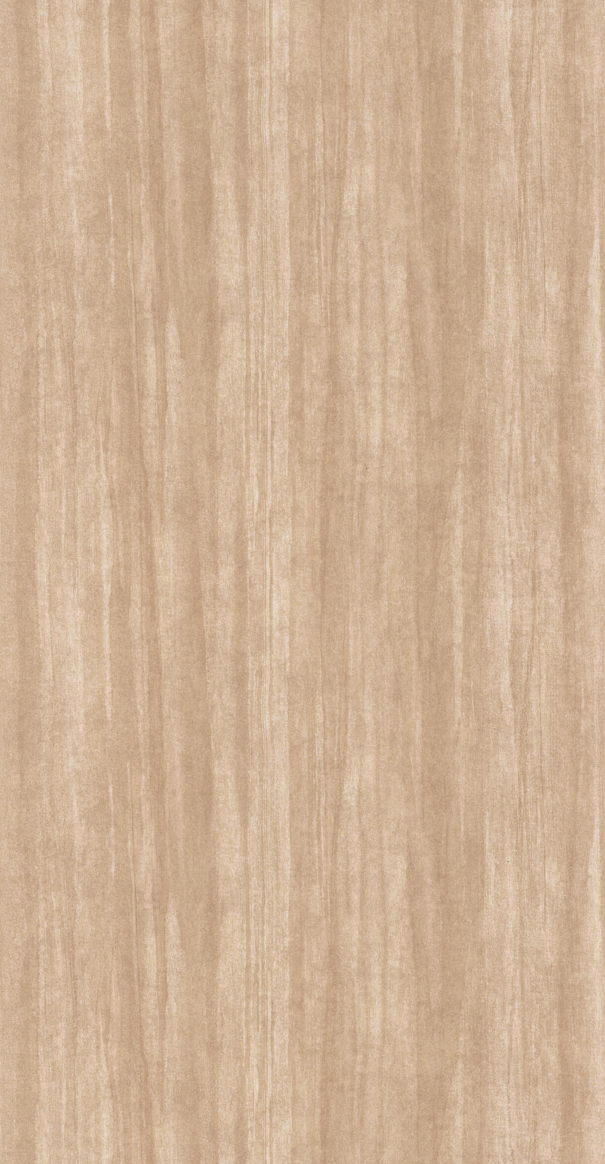 85981404 Collection - Woods
